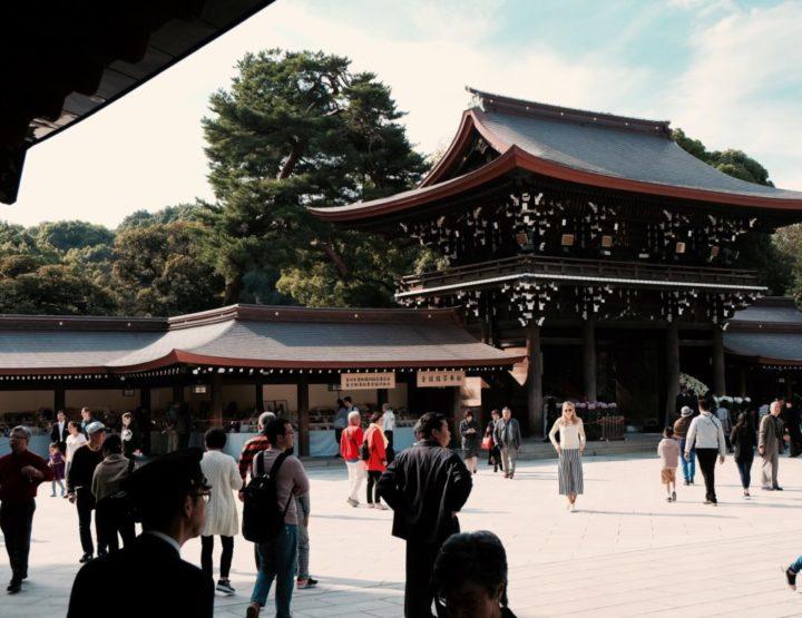 Diary blog: Kennis maken met bruisend Tokyo in Japan