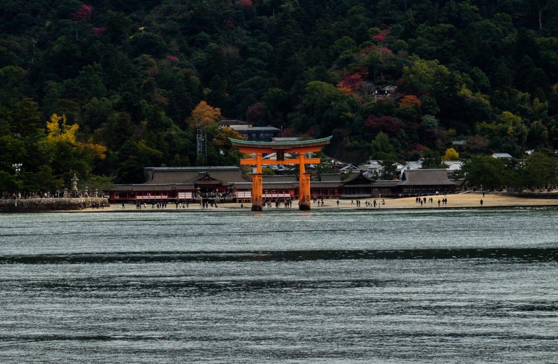 Japan: yamijami tori