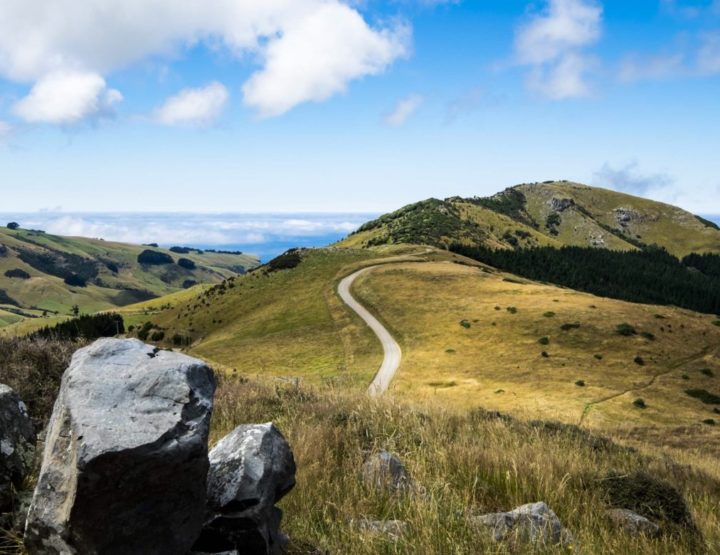 Our five favorite hikes in New Zealand