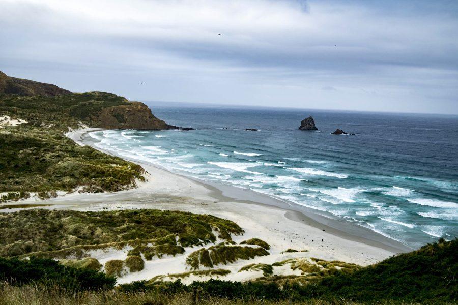 sandfly bay New Zealand