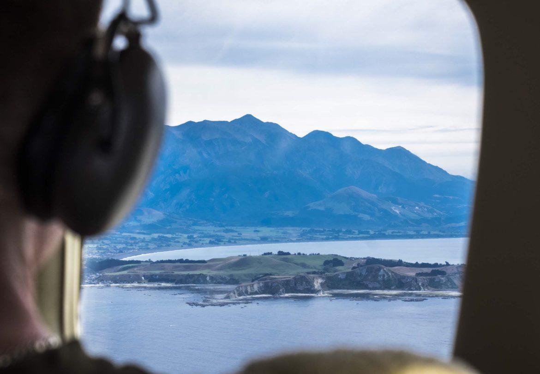 NZ:flight