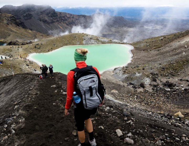 Three itineraries for the North island of New Zealand