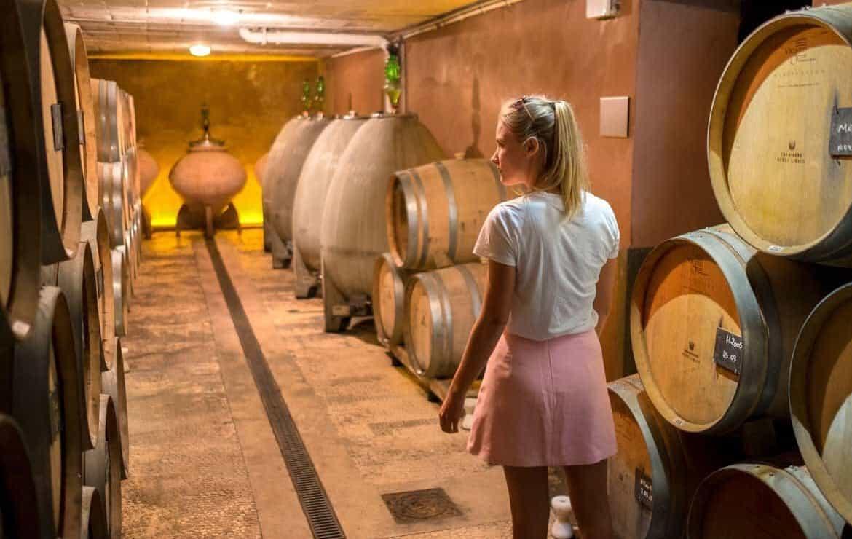Champagne region France Epernay Barrels Henri Giraud
