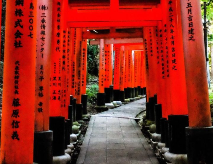 Travel blog Japan: all you need to know about backpacking and traveling in Japan!