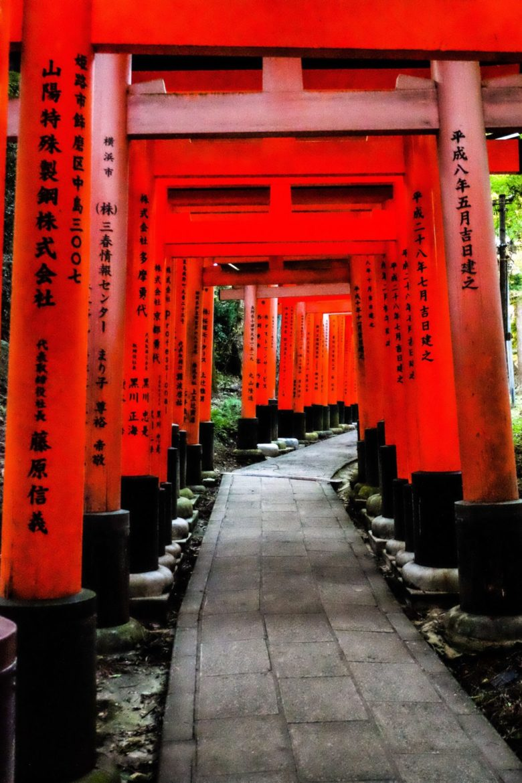 japan: red shrines