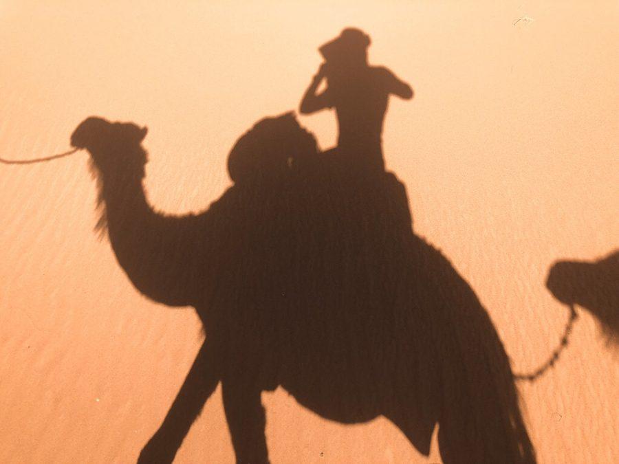 Morocco merzouga desert cameltrip