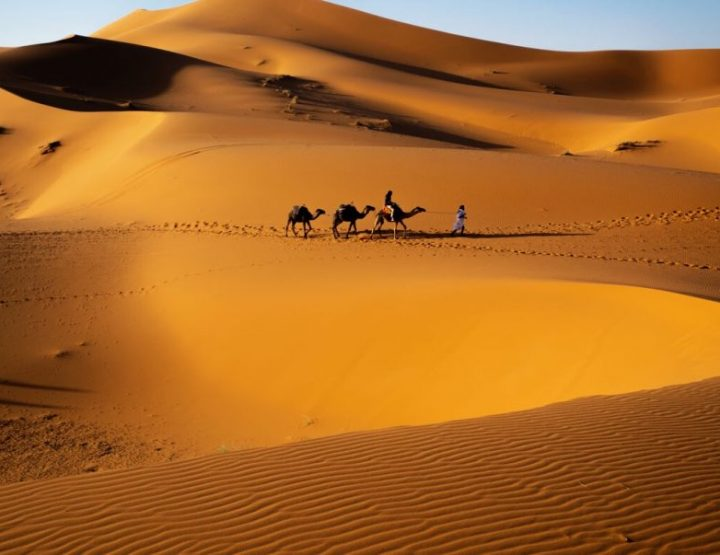 Travel guide Merzouga: Camel tour and spending a night in the Sahara of Morocco!