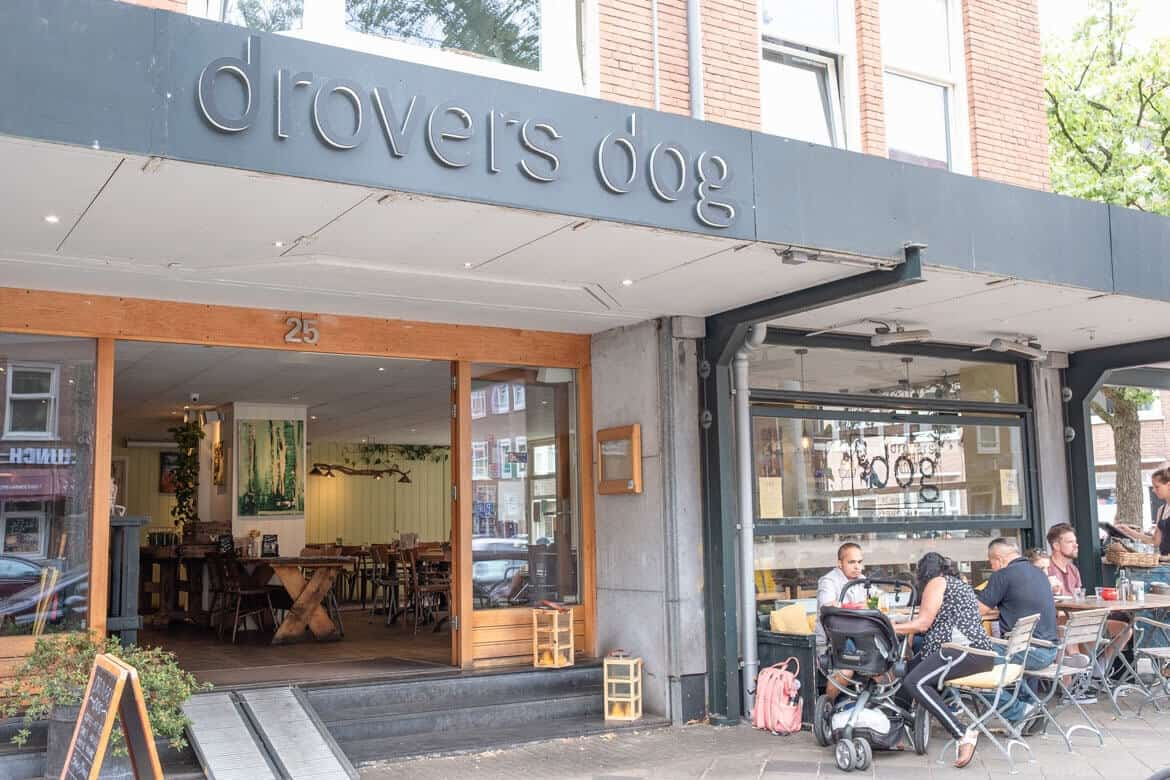 Brunch Amsterdam travel guide Drovers Dog