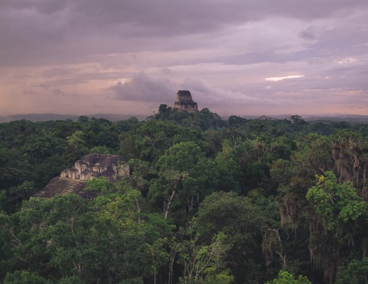 Everything you need to know before visiting the Maya temples of Tikal, Guatemala!