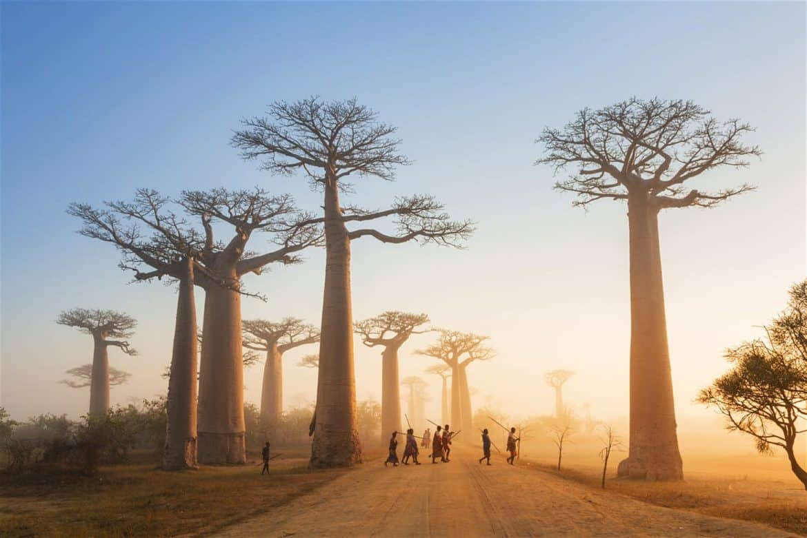 Madagascar Roadtrip Source: Lonely planet