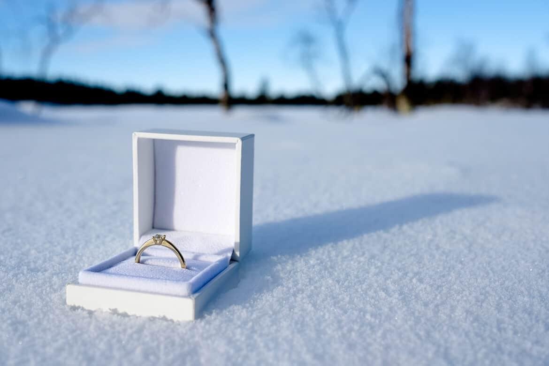 Proposal Lapland
