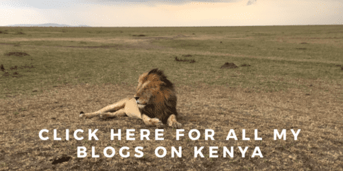 Travel blogs on Kenya