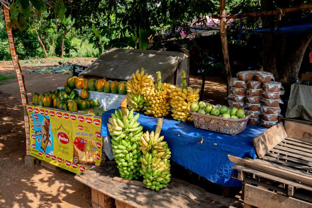 Fruittent Sri Lanka Anuradhapura