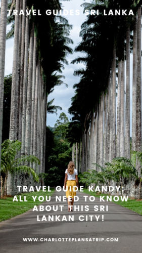 Travel guide Kandy: The most relaxing places to escape this busy town in Sri Lanka