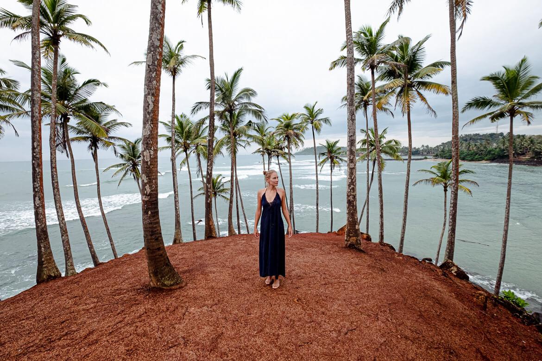 Coconut Three Hill sunrise close up Charlotte Mirissa