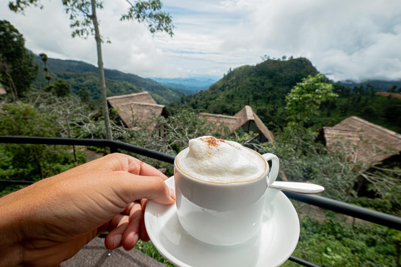 Coffee 98 Arcres resport