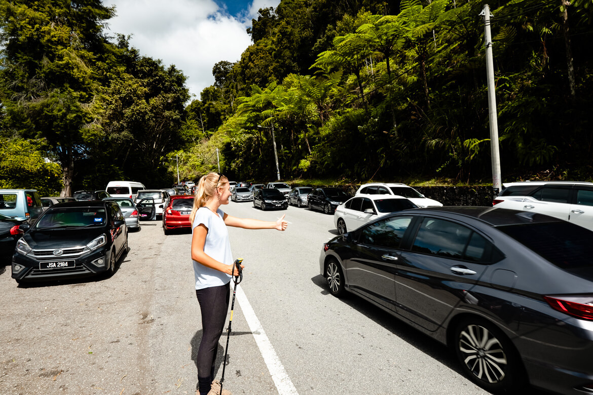 Hitch hiking at Cameron Highlands