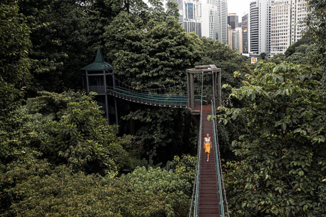KL Eco forest walk Kuala Lumpur
