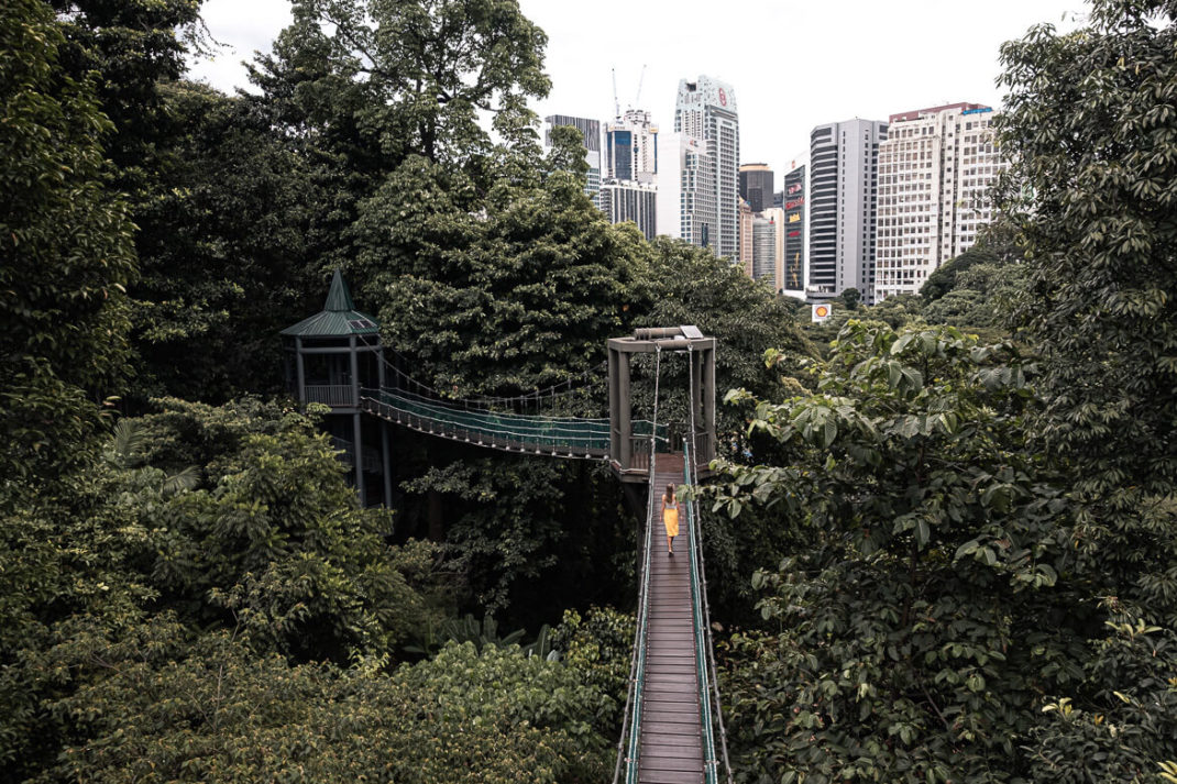 KL Eco forest walk with Charlotte Kuala Lumpur