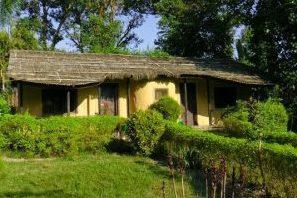 Jungle Base Camp Badia National Park Nepal