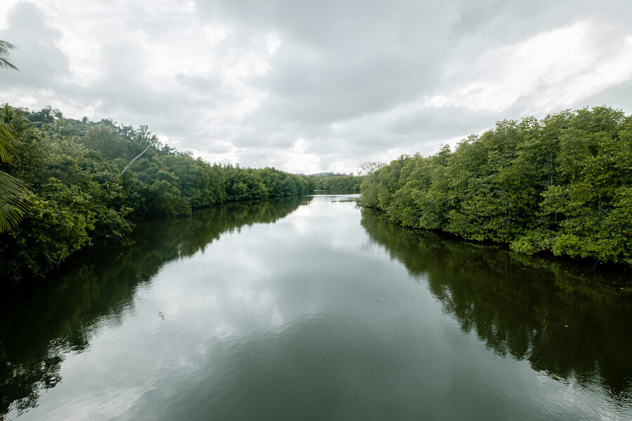 Mangrove Tip of Borneo sea view Sabah Malaysia