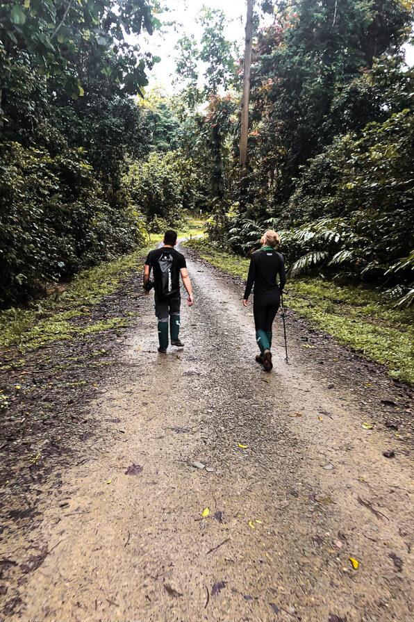 Walking around Danum Valley Sabah Borneo Malaysia