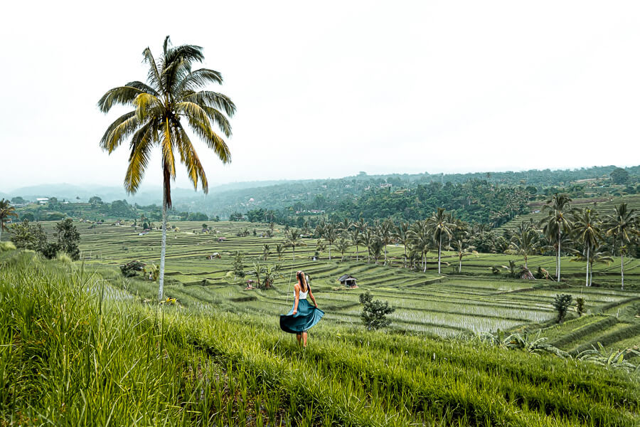 Rice terraces of Bali with Charlotte Plans a Trip Bali Indonesia