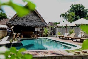 Tentacle Bali