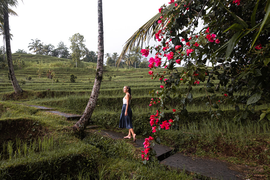 Wondering around on the rice terracces of Bali Indonesia