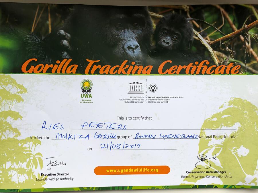 Travel Guide Uganda Gorilla Tracking Certificate