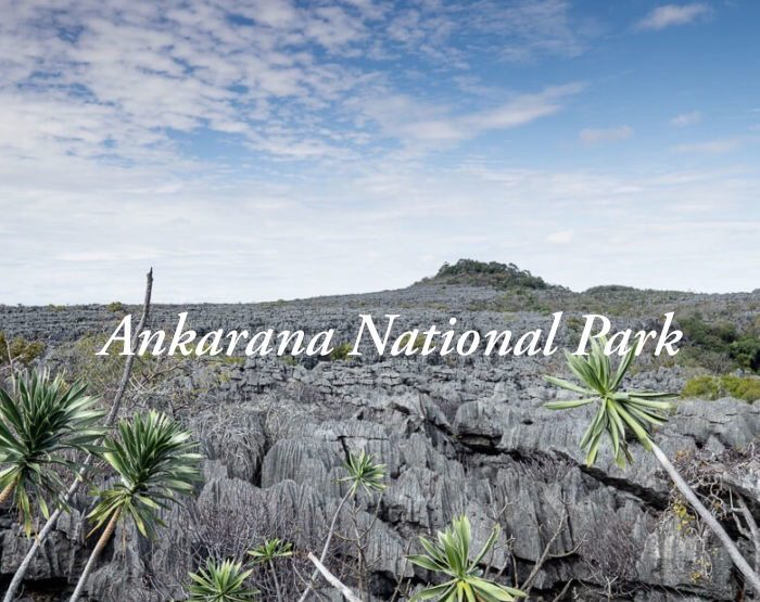 Ankarana National Park travel guide: Tsingy, caves and skulls in Madagascar!
