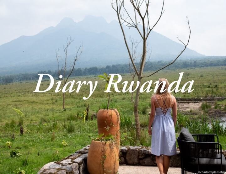 Diary week 11 and 12 | road trip through Uganda and Rwanda!