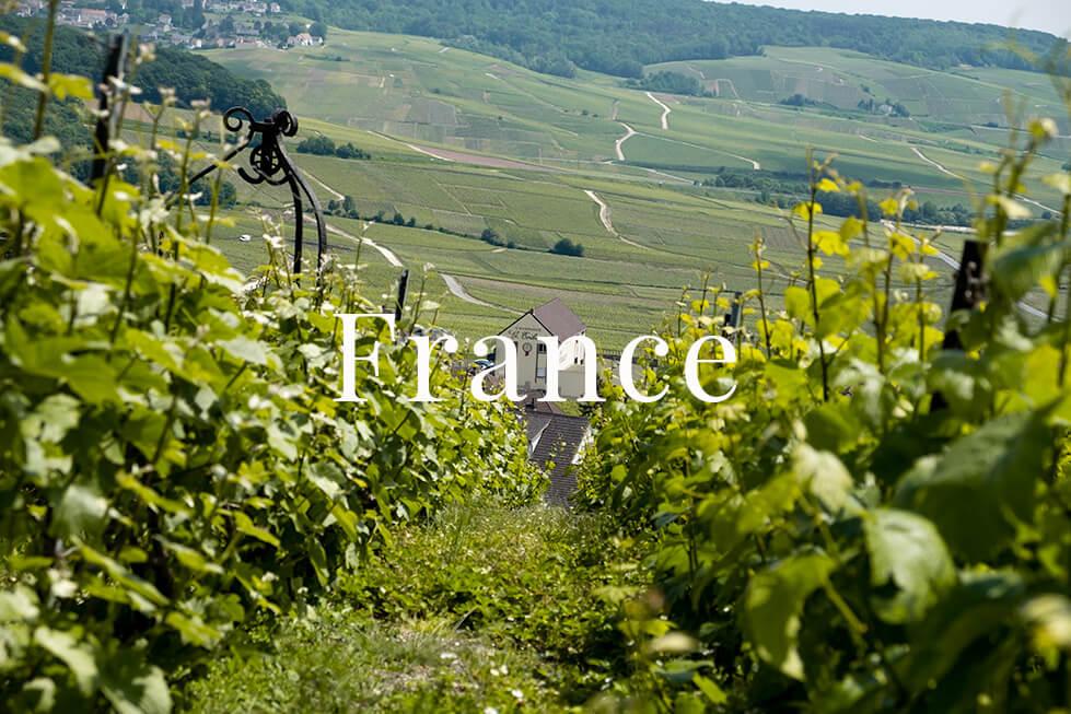 France Charlotte Plans a Trip