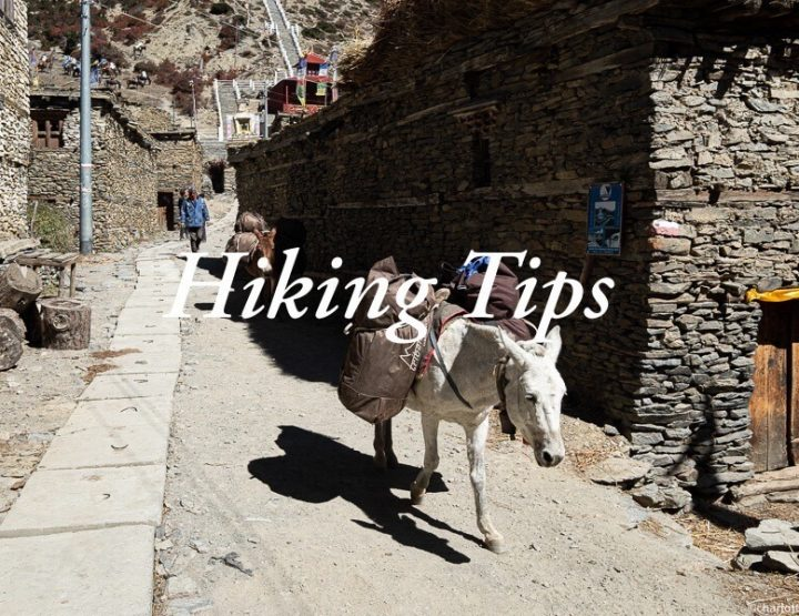 12 Tips for walking the Annapurna Circuit in Nepal!
