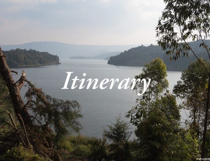 Uganda Itinerary | 3-week itinerary for backpacking Uganda!