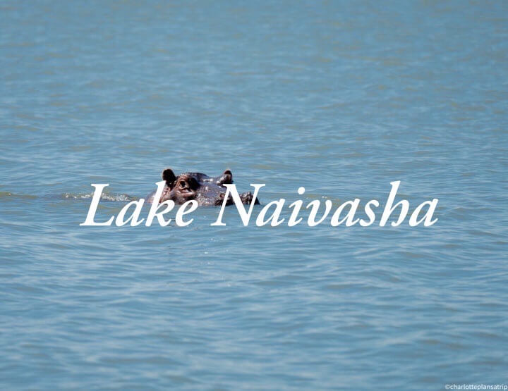 Lake Naivasha and Hell's gate National Park in Kenya: 6 cool things to do!