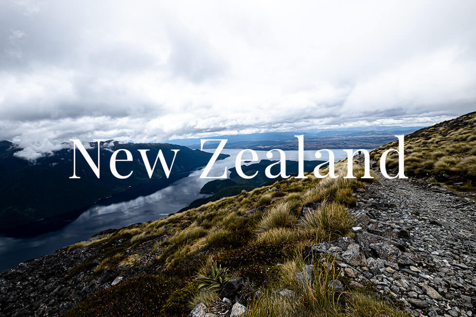 New Zealand Charlotte Plans a Trip