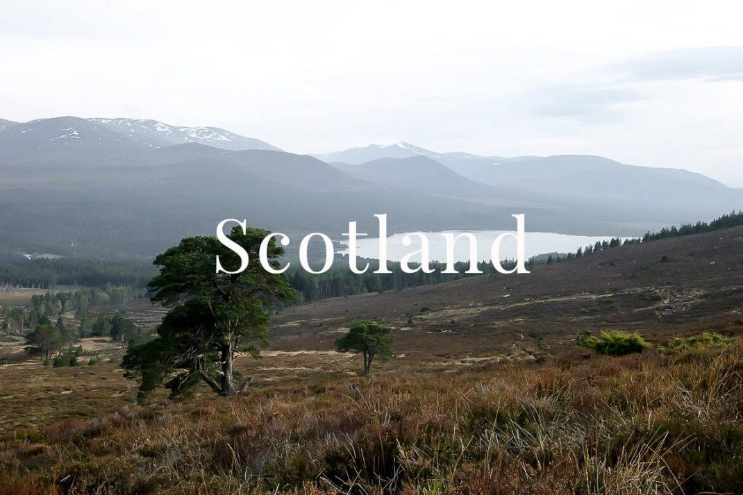 Scotland Charlotte Plans a Trip