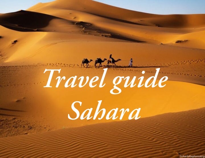 The Merzouga desert: a camel tour and camping in the Sahara of Morocco!