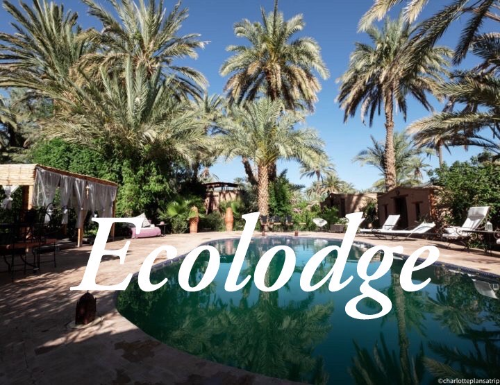Ecolodge Bab El Oued: Sleeping in an Oasis in the south of Morocco!