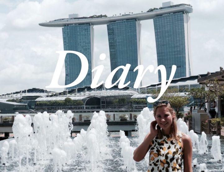 Diary blog Singapore: vier dagen de tijd om Singapore te ontdekken!
