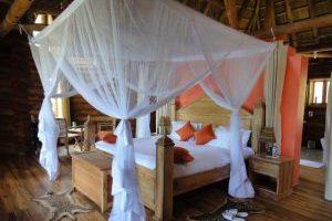 Trackers safari lodge Buhoma Bwindi