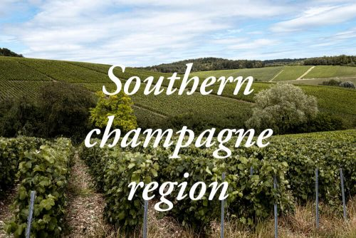 Côte des Bar in Aube: the southern champagne region that you should not miss!