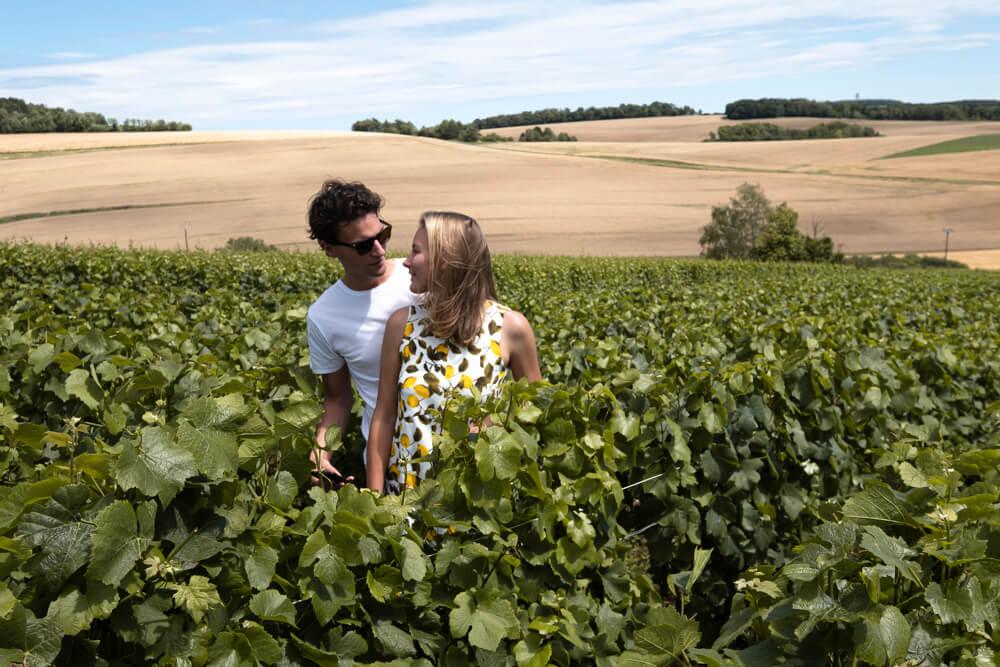 Champagne region near Troyes Charlotte Plans a Trip Vinyards