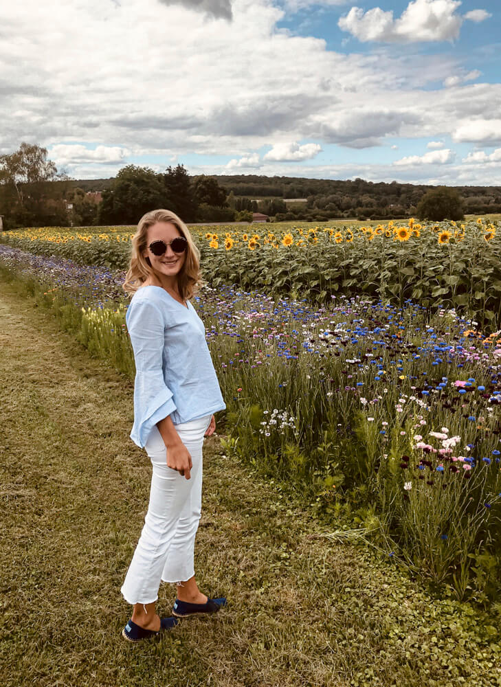 wild flowers in France Charlotte Plans a Trip