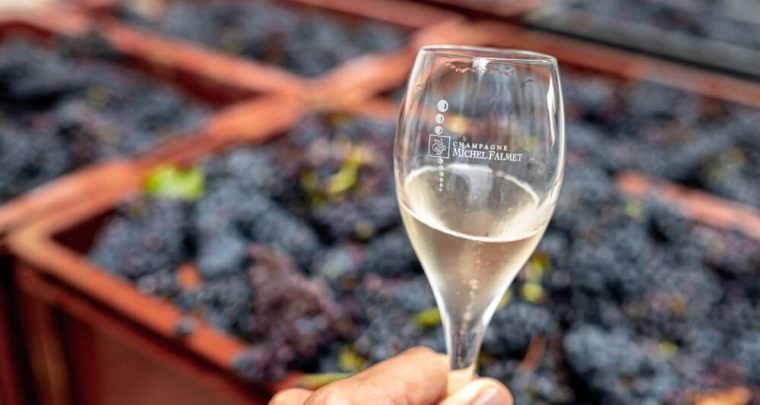 Diary blog: three wonderful days in the southern Champagne region!