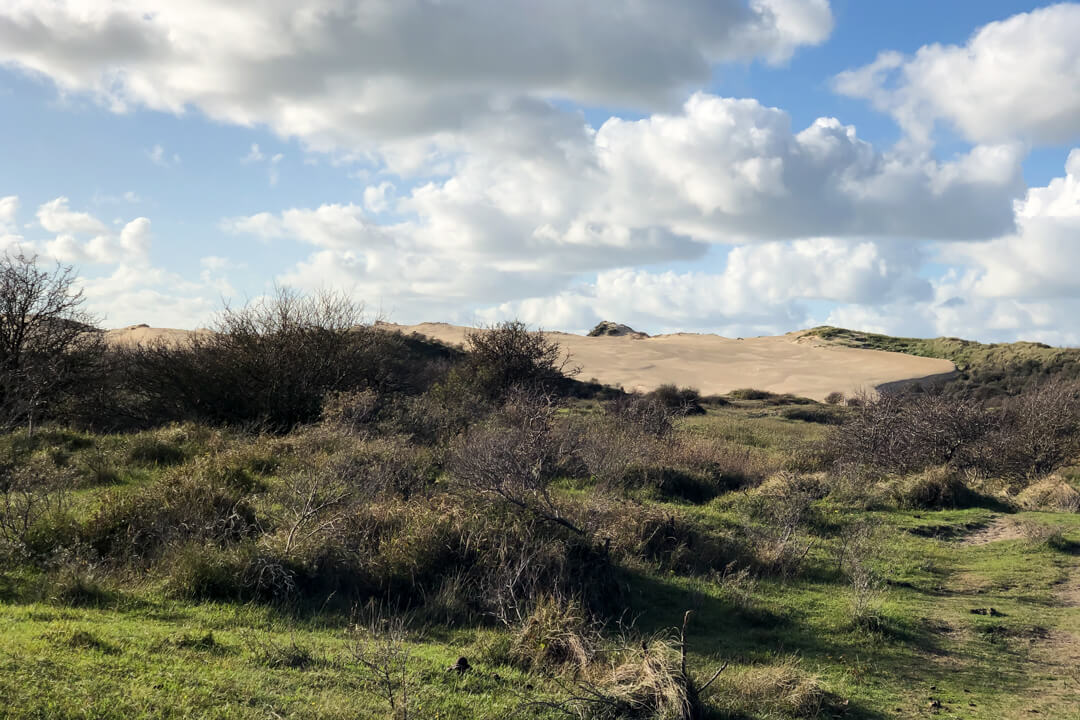 Dutch dunes and hiking trails the Netherlands