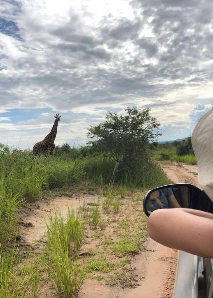 Murchison Falls self-drive Safari