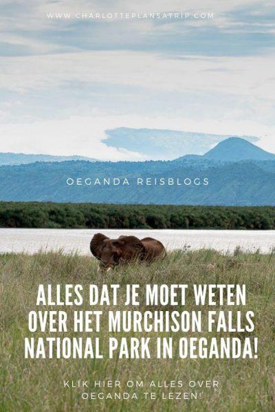 Murchison Falls 4 2